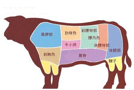 关于牛排的知识汇总 (11)